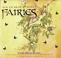 How to Draw and Paint Fairies